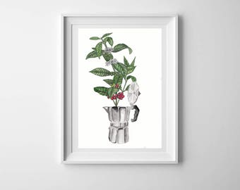 Coffee plant watercolour illustration - Moka pot - A4 print -  Kitchen art - Coffee lover - Coffee lover gift - Plant illustration