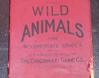 Wild Animals, vintage educational card game
