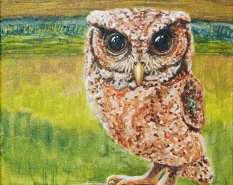 Reddish Spotted Scops Owl ~ Original, hand-painted 11x14, unframed.  FREE shipping USA