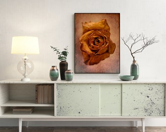 Antique Rose Fine Art Print - Fine Art Print or Canvas, Limited Edition