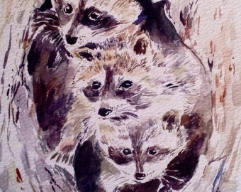 SALE -Raccoon Illustration- Art Print- Watercolor Painting- Animal Art- Raccoon Painting - Pnw Art - Woodland Art - Giclee Print