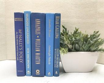 Blue Shelf Decor, Blue Books, Modern Decor