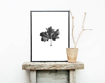 Maple Leaf Print, Leaf Wall Art, Botanical Print, Canadian Print, Black and White, Modern Minimalist, Digital Download, Scandinavian Print