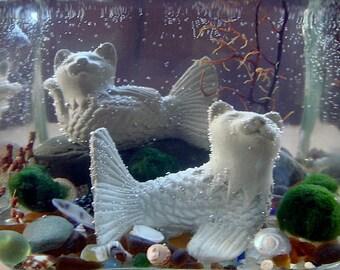 SALE! Mercat Marimo Moss Balls Katfish Cat Mermaids Mini Aquarium / Terrarium