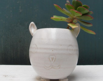 Small Cat Face Pottery Flower Pot Animal Indoor Planter