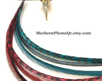 Feather Earrings - Bird Skull / Red and Teal Feathers / Long Grizzly Feathers Whiting / BOHO Jewelry / Long Feathers / Surgical ear hooks