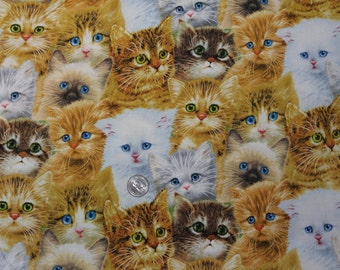 Fabric BTY Kitten Cuties