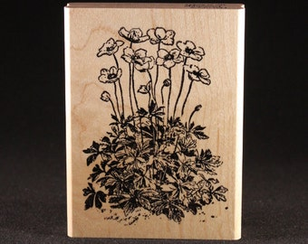 "Anemone Rubber Art Stamp (3"" x 4"")"