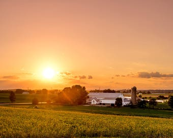 Farm in the Evening Sun, Setting of the Evening Sun Creating a Golden Orange Glow over Farmland of Southern Lancaster County, Pennsylvania