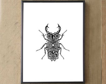 Lacy Print Artwork -Stag Beetle