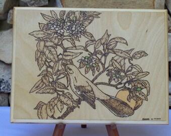Mockingbird with Orange Blossom Woodburning Pyrography