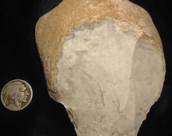 Museum Quality Paleo Indian S.Texas Artifact