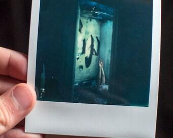 Polaroid Original - Collapsed