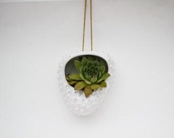 Hanging succulent planter/ flower pot/ hanging planter/ white ceramic pot
