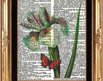IRIS and BUTTERFLY - Art Print on Vintage Dictionary Page Beautiful Antique Image Botanical Print Home Decoration Wall Hanging