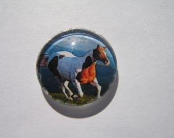 Glass cabochon 20 mm with a patterned Brown and white horse image