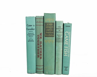 Rustic Sea Green Books, Turquoise Book Collection, Book set, Decorative Books Old Books, Instant Library, Book Decor, Fixer upper,