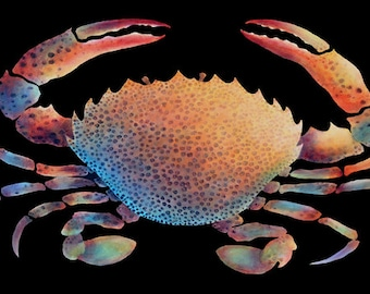 """GICLEE PRINT OF """"Beautiful Lady Crab"""" (on blk)"""