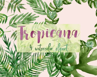 Tropical clipart, tropical leaves, palm branches, monstera clipart, jungle clipart, tropical wreath, tropical wedding, green leaves clipart