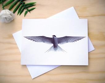 Blank greetings card, any occasion card, wildlife greetings card, photographic greetings card, photo greeting card, bird card, birthday card
