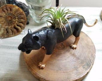 Hand Painted black and gold cat planter ~ cat plant pot ~ air plant pot ~ cat toy planter