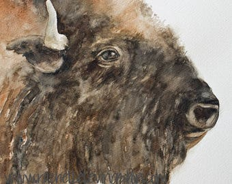 buffalo painting buffalo print for nursery art print for nursery peek a boo animal print for baby SEE PHOTOS to view all 15 PRINTS 11x14