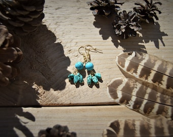 Native Americans POW WOW earrings