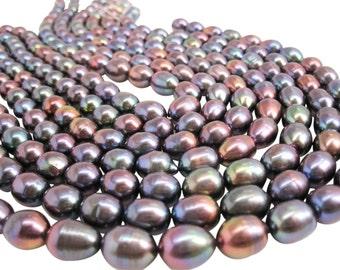 Black Purple Violet Peacock Freshwater Pearl Beads,  8mm x 10mm, Peacock Pearls, SKU 3869