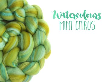 Blended top - roving - Merino wool - Mulberry silk - 100g - 3.5oz - Watercolour blends - MINT CITRUS