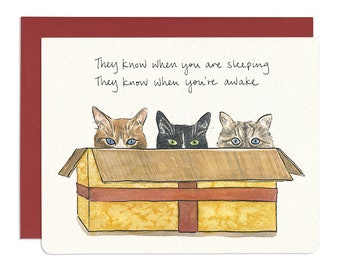 Cats in a Box Holiday Card