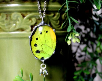 Real Butterfly Wing Jewelry, Green Birdwing Butterfly, Crystals