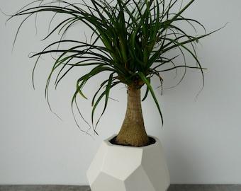 Sur la vente, Geo-jardinière, jardinière à facettes géométrique, céramique, porcelaine moderne Crystal Design