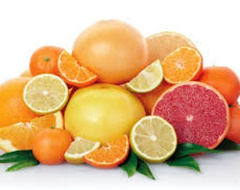 Citrus Splash - Home Fragrance Oil - Warmer / Burner Oil - 2 Fluid Ounces