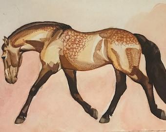 Buckskin Horse Watercolor