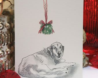 Boxed Golden Retriever Holiday Cards