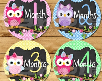 Owl baby girl Monthly stickers, Baby month stickers, Month baby stickers, baby girl monthly stickers, Baby girl monthly stickers, Owl decals