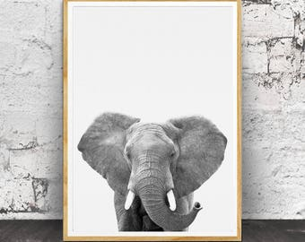 Elephant Animal Print,Nursery Animal Print, Boys Room Wall Art,Safari Nursery Art,Safari Animal, Nursery Printable, Nursery Decor, Animal