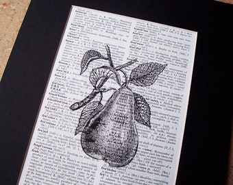 Botanical Pear Fruit Art Print Decor - Dictionary Illustration Artwork Boho Chic Shabby - Wall Vintage Homewares Black White Gardener Women