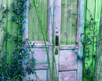 "Old Door Photo, Purple Doors, Shabby Cottage Art, Rustic Farmhouse Decor, Cottage Door Art, Home and Garden Art- ""Lavender Cottage Doors"""