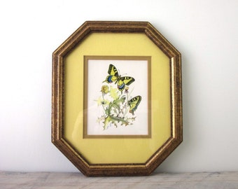 Vintage Butterfly Print Matted with Gold Wood Frame and Glass