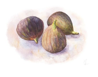 Fig Fruit Painting Original Watercolor Still Life Organic Tropical Healthy Digital Download Art Print Illustration Home Wall Kitchen Decor