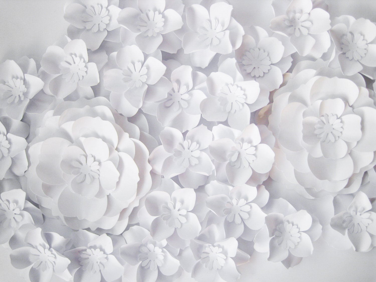 White Paper Flower Geccetackletarts