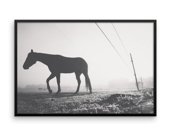 Foggy Morning Horse 2 | B&W Horse Photograph | FRAMED | Decor | Wall Art | Horses | Horse Pictures | Art | Black and White | Horse Love