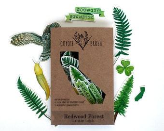 California Redwood Forest Temporary Tattoos: Owl, Redwood, Sorrel, Fern, Ribbon