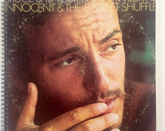 Bruce Springsteen recycled record album book