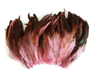 Long pink feathers
