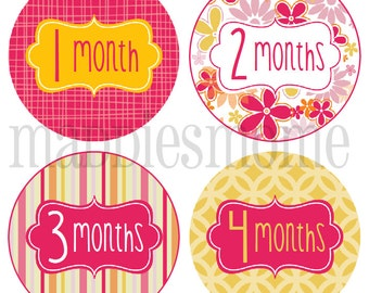 Monthly Baby Girl Stickers, Milestone Stickers, Baby Month Stickers, Monthly Bodysuit Sticker, Monthly Stickers Flowers Pink Yellow (Emily)