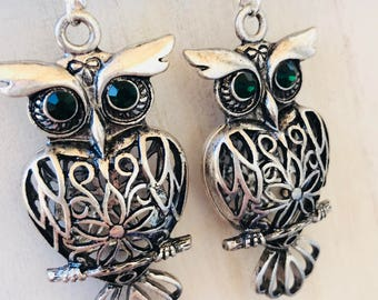 Embellished Caged Silver Owl Earrings