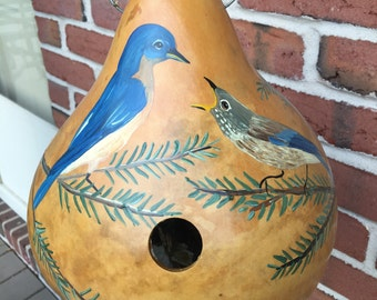 Hand painted gourd birdhouse with blue bird and baby
