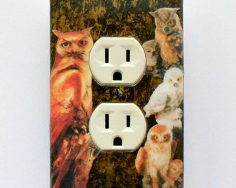 Owl theme Outlet covers & switch plates w/ MATCHING SCREWS- Snowy Owl print wall decoration owl switch covers owl plates owl collectible art